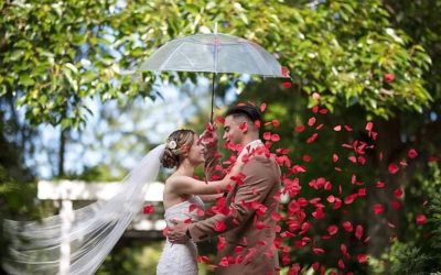 wedding couple under clear umbrella with red rose petals bramble grove